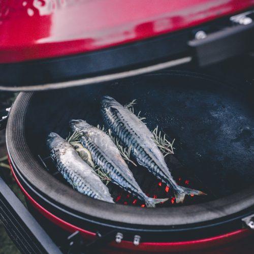 Cepšanas virsma zivīm